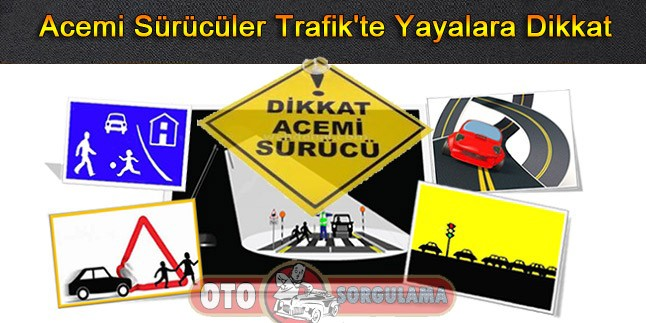 Acemi Sürücüler Trafik'te Yayalara Dikkat